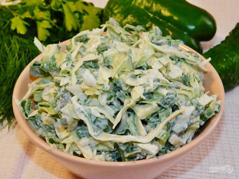 Зеленый овощной салат