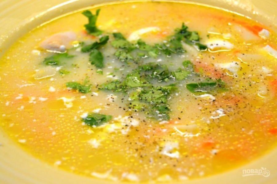 10.Помойте петрушку, крупно ее порежьте. Посолите и поперчите по желанию суп, украсьте зеленью и подавайте к столу.