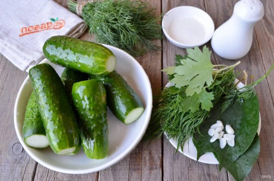 Вымойте тщательно огурчики и всю зелень. Очистите чеснок, порежьте на 2-3 части каждый зубочек. У огурчиков срежьте кончики. Приготовьте сухой и чистый пакет.