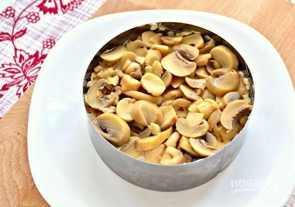 5. Ровным слоем выложите маринованные грибочки.