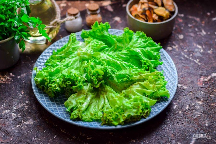 Салат ополосните и просушите. Выложите салат на тарелку.