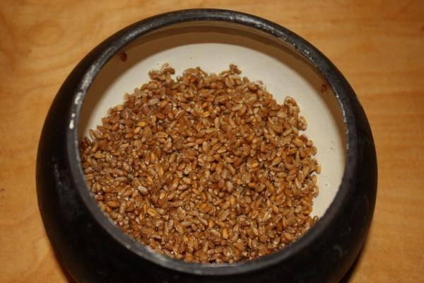 Пшеницу замочите на несколько часов в воде, затем промойте и сложите её в горшочек.