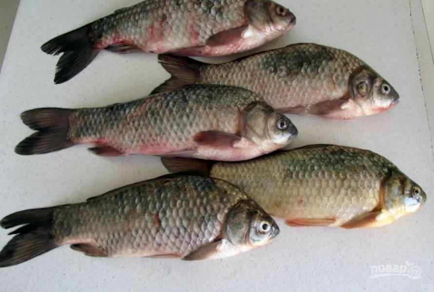 1. Рыбу моем и чистим, удаляем у неё внутренности и крупные кости. Промоем и обсушим.