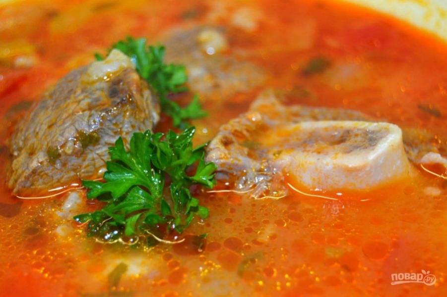 14.Готовый суп подавайте горячим, украсив веточкой зелени.