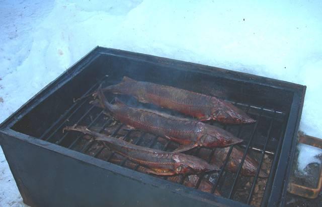 2. Смешаем все сухие специи, натрем рыбу и оставим под гнетом в холодильнике на сутки. Дальше добавим вино, перемешаем и оставим еще на сутки солиться. Затем достаем, очищаем от лишней соли и даем просушиться на свежем воздухе. И только потом коптим при температуре не выше 80 градусов. Коптим около двух часов, но, может, и меньше.