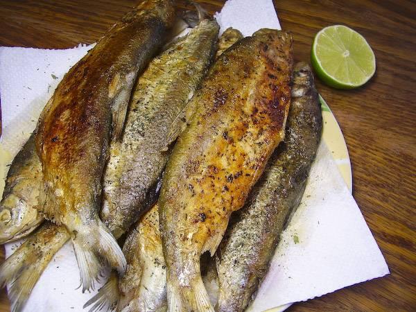 Обжаренную рыбу выкладываем на салфетки, чтоб те забрали лишний жир. Посыпаем перцем и орегано.