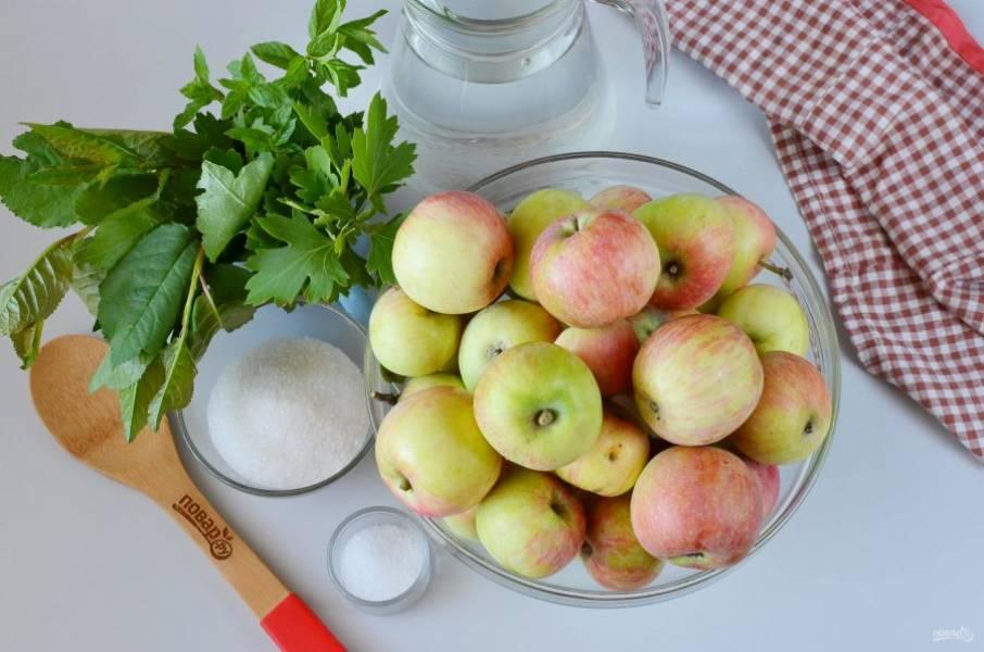 Подготовьте яблоки, воду, сахар и соль, листья вишни и смородины. Яблоки переберите, испорченные и битые не подходят!