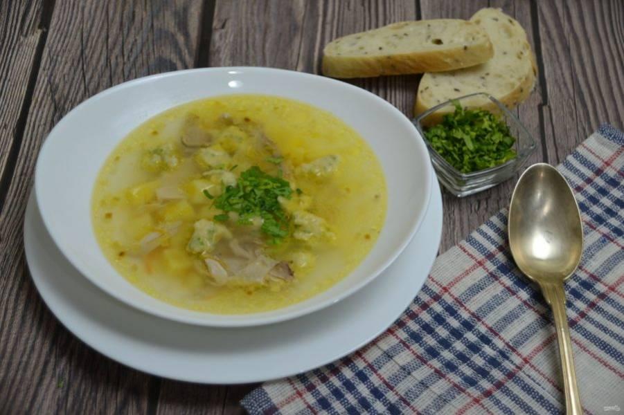 Разливайте суп по тарелкам, подавайте к супу измельченную зелень петрушки. Получился очень вкусный и легкий куриный суп с легкой пикантной ноткой чеснока. Приятного аппетита!