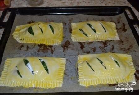 Выкладываем пирожки на противень, застеленный бумагой для выпечки, смазываем их яичным желтком и ставим в разогретую до 200 градусов духовку минут на 15-20