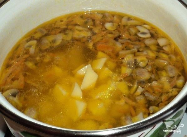 Отправляем грибы и морковку в кастрюлю к картошке. Солим. Варим минут 10-15. Если картошка сварилась - суп готов. Добавляем кориандр, лавровый лист.