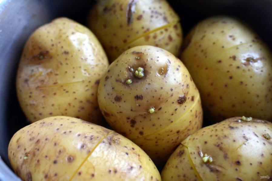 Картофель  тщательно вымойте, сделайте неглубокие надрезы вкруговую на каждом клубне.  Залейте картофель водой и варите до готовности.