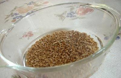 1. Сочиво - прекрасное праздничное блюдо, которое готовят из риса, перловки или пшеницы. В нашем случае - это как раз последний вариант. Для начала следует замочить крупу (лучше на ночь).