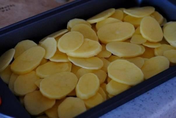 Форму для запекания смажьте растительным маслом и выложите в нее порезанный кружочками картофель. Посолите и поперчите.