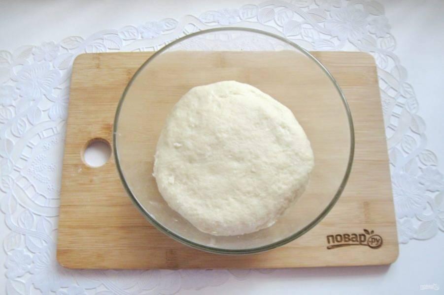Замесите мягкое, не липнущее к рукам тесто и выложите в миску. Я замешивала тесто в планетарном миксере, но и руками тоже хорошо получается.