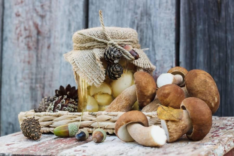 Топ-5 блюд с белыми грибами