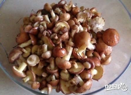 Первым делом очистим грибы. Маленькие маслята можно оставить с кожицей на шляпках. Но, если опасаетесь, очищайте.