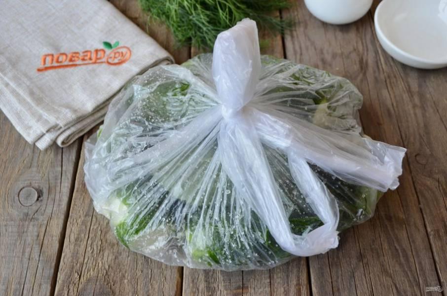 Завяжите плотно пакет, потрясите его, чтобы огурчики перемешались с чесноком и солью, сахаром. Отправьте его в холодильник на 8-10 часов минимум.