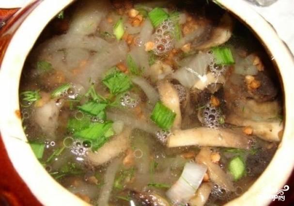 Добавляем в горшочек зелень и заливаем  водой почти до верха. Ставим в духовку на 40 - 60 минут.