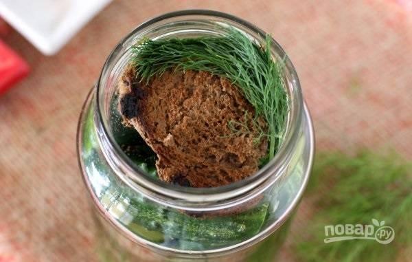 7. Сверху выложите оставшийся хлеб и зелень.