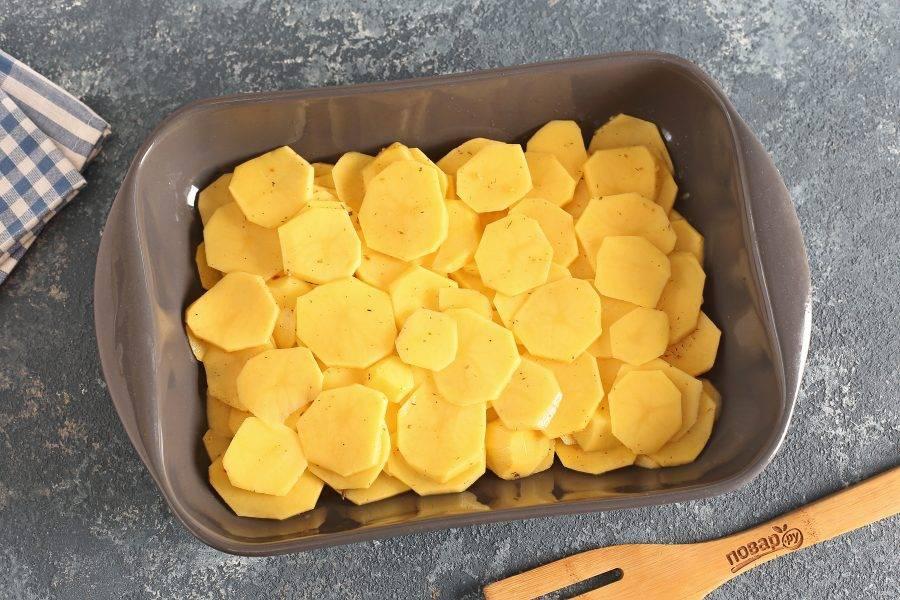 В жаропрочную форму выложите картофель.