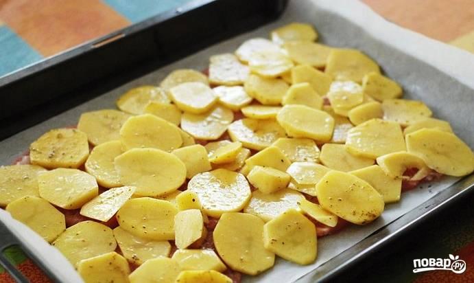 Противень смажьте растительным маслом и выложите на него мясо, присолите его и поперчите. Очистите картофель и нарежьте кружочками, выложите на мясо, немного посолите.