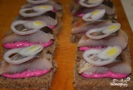 Поверх соуса выкладываем кусочки селедки и красиво выкладываем колечки лука.