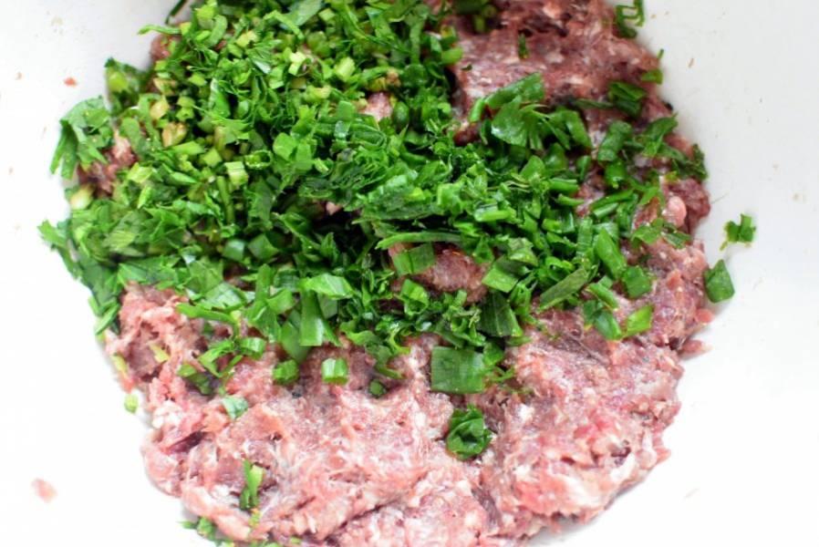 Смелите фарш из говядины и свинины. Добавьте мелко шинкованный зеленый лук и зелень петрушки, сельдерея.