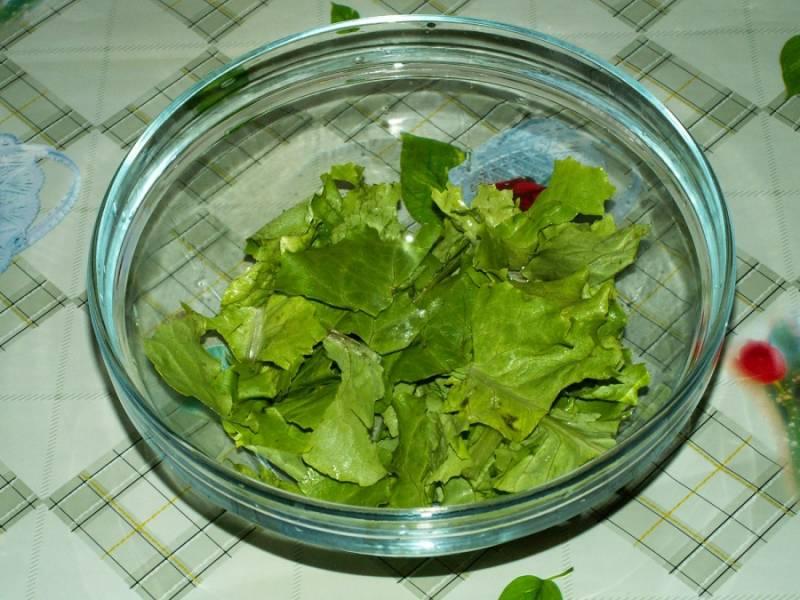6. Вымыть листья салата, обсушить и порвать руками. Выложить на дно салатника.
