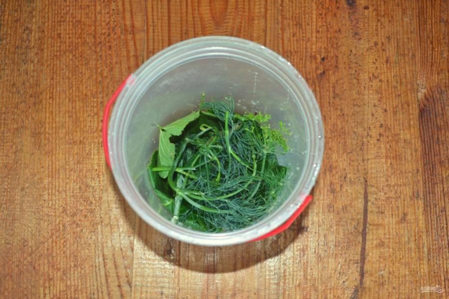 Всю зелень тщательно вымойте, половину выложите на дно контейнера, в котором будете мариновать огурцы.