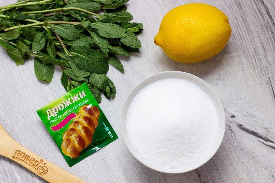 Подготовьте все необходимые ингредиенты. Лимон и мяту хорошо помойте, немного мяты отложите для подачи.