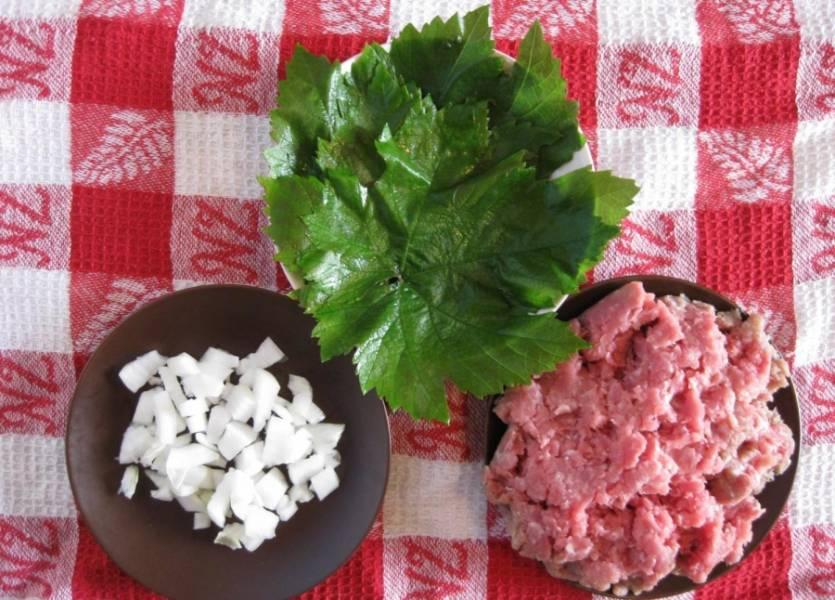 Фарш перемешиваем с рисом и измельченным луком, также добавляем специи. Должна получится однородная масса.
