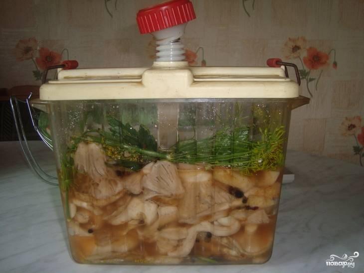 Ставим под пресс в холодное место. Благодаря гнету, грибы будут просаливаться практически в собственном соку. Грибы будут готовы через 1-1,5 месяца. Периодически их стоит проверять, чтобы верхний слой не стал сухим и не покрылся плесенью.