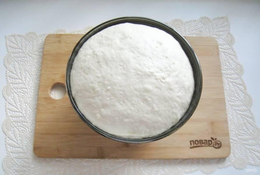 Миску с тестом накройте пищевой пленкой или полотенцем и поставьте в теплое место. Через час оно увеличится в объеме и будет готово к работе.