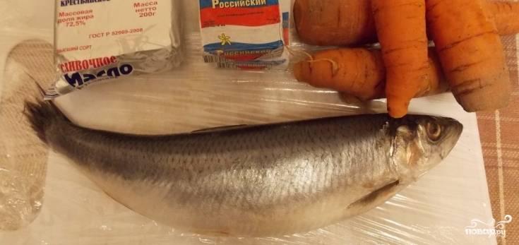 1. Вот они — наши ингредиенты. Чистим рыбу от костей и чешуи, перетираем филе в блендере с плавлеными сырками и отварной морковью.