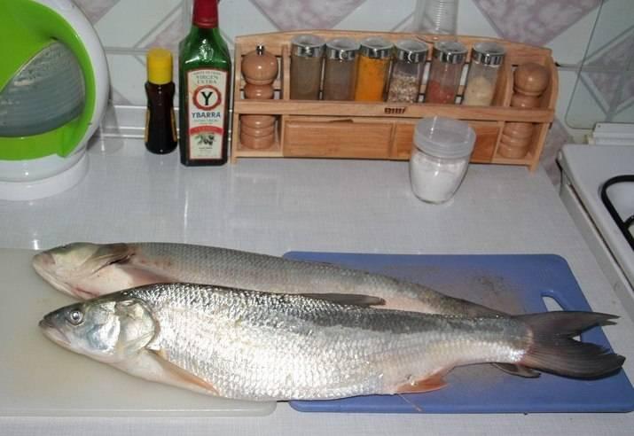 Очистите рыбу и отделите рыбное филе от костей.