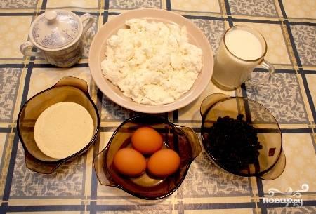 1. Вот такой набор ингредиентов необходим, чтобы повторить этот простой рецепт творожной запеканки с молоком на вашей кухне.
