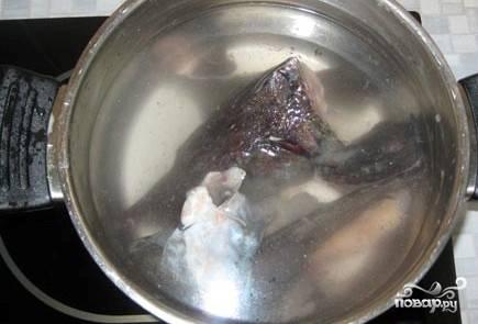 Выкладываем голову, хвост и плавники в кастрюлю, заливаем все это водой. Ставим на плиту и дожидаемся момента закипания.