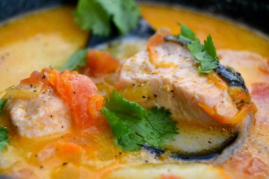11.Разлейте суп по тарелкам и украсьте зеленью (петрушкой или кориандром). Подавайте горячий суп сразу.