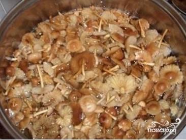 2. Далее кладем грибы в кастрюлю, заливаем водой и варим 30 минут на большом огне. В процессе варки необходимо подсолить воду по вкусу.