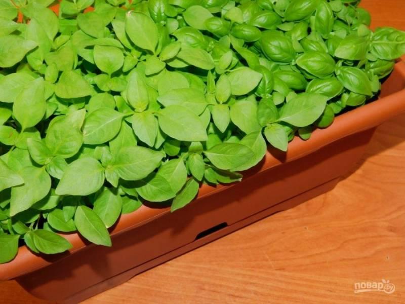 Добавьте несколько листиков мелко нарезанного базилика.