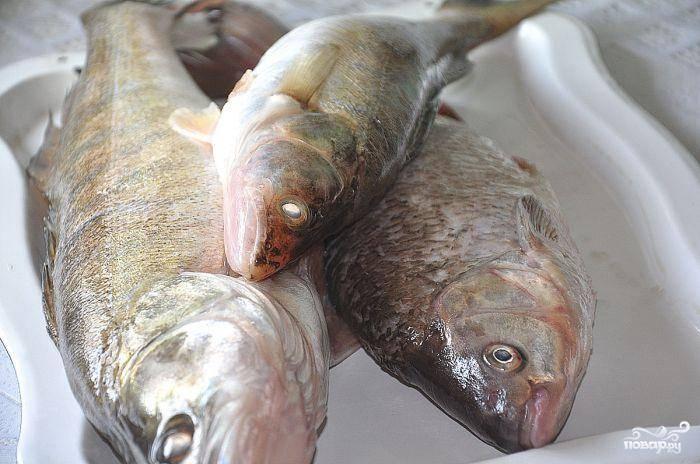 Рыбу для начала хорошенько промоем. У меня на фото - судак и язь, однако в оригинальном рецепте должен быть только судак.
