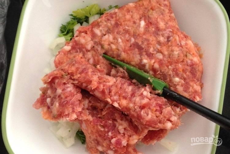 2. Смешайте фарш, измельченный лук и петрушку. Приправьте солью и перцем по вкусу.