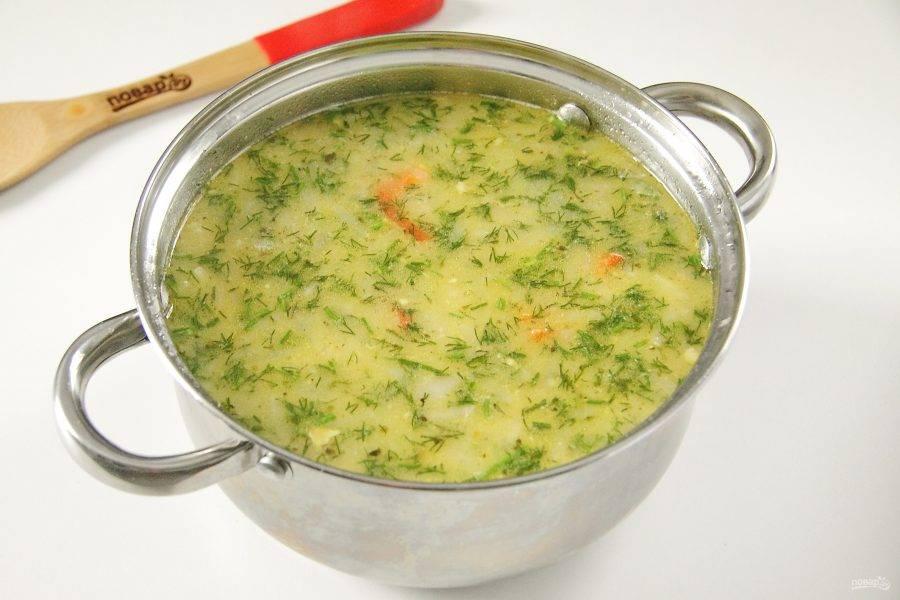 Влейте сливки и добавьте любую свежую измельченную зелень. Доведите до кипения и проварите еще пару минут. Накройте крышкой и дайте немного настояться. Куриный суп с яблоками готов.