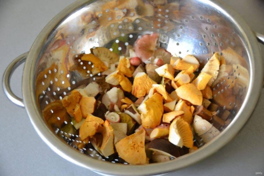 Очистите грибы от лесного мусора, порежьте и промойте, не старайтесь как следует просушивать грибы, пусть на них останется часть воды.