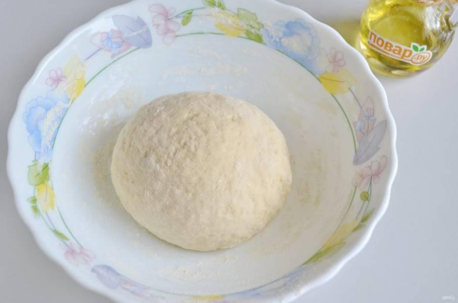 2. В теплом молоке растворите дрожжи свежие, соль, сахар. Перемешайте. Добавьте топленное сливочное масло, яйцо, ванилин, муку, замесите мягкое пластичное тесто. Накройте салфеточкой и уберите в тепло на часик для подъема.