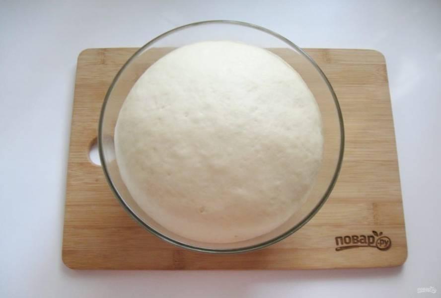 Накройте тесто пищевой пленкой и поставьте в теплое место. Через час-полтора оно увеличится в объеме.