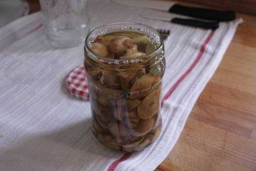 Готовим маринад. В кипящую воду добавьте: соль, сахар, перец горошком, лавровый лист, гвоздику. Маринад кипятим 5 минут, в самом конце добавьте уксус. Поместите грибы в банки и залейте маринадом.
