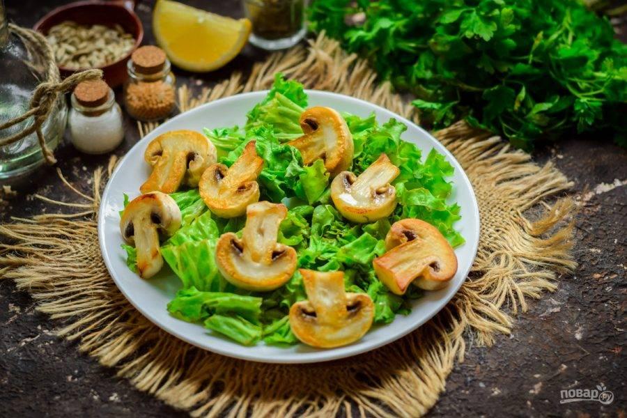 Поверх салата разложите слегка остывшие грибы.