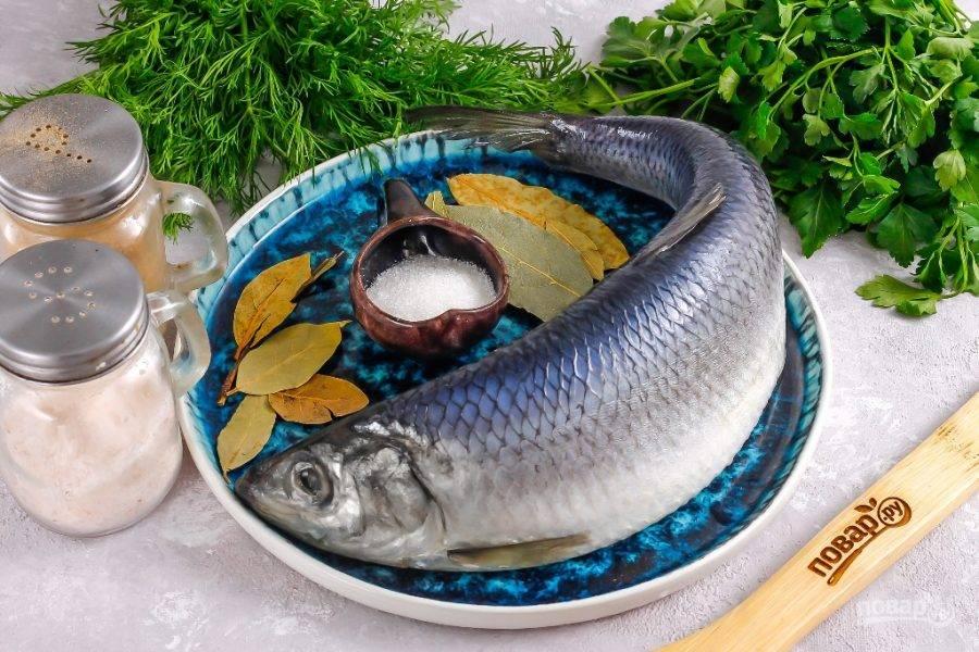 Подготовьте указанные ингредиенты. Сельдь очистите от чешуи, промойте, но не потрошите рыбу — она солится целиком.