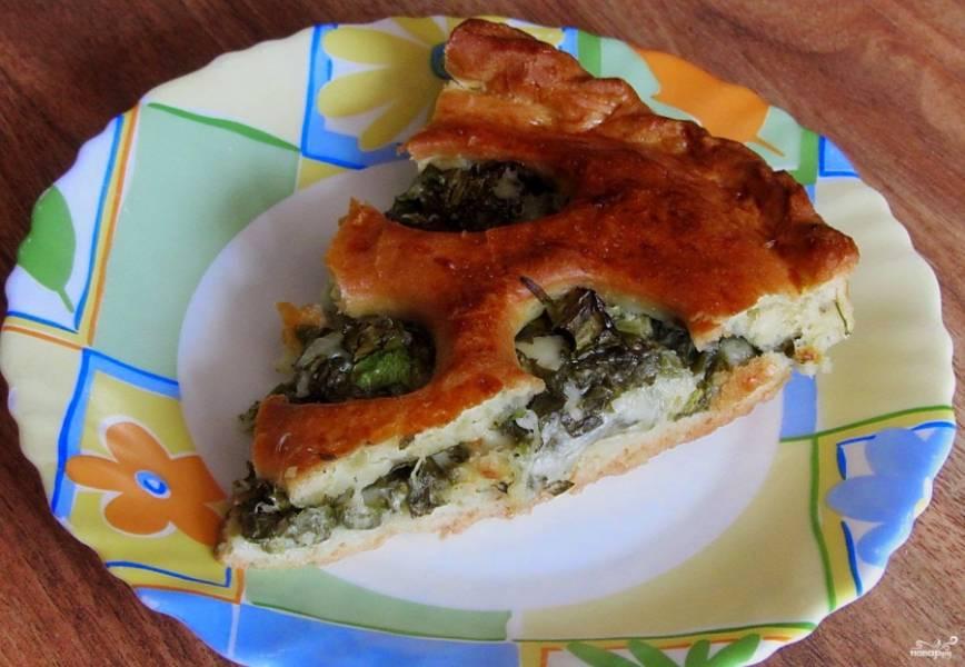 Готовый пирог с моцареллой очень хорош со сметаной или чесночным соусом.